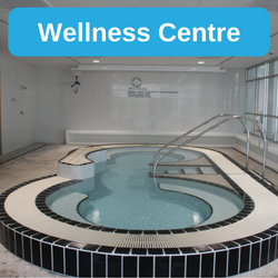 Wellness Centre: Spa and Dry Sauna